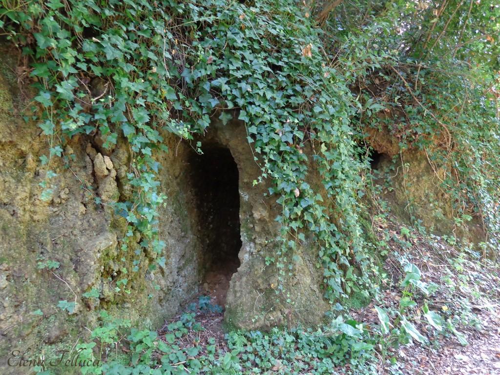Cunicolo di epoca etrusca sul bordo di un fosso.