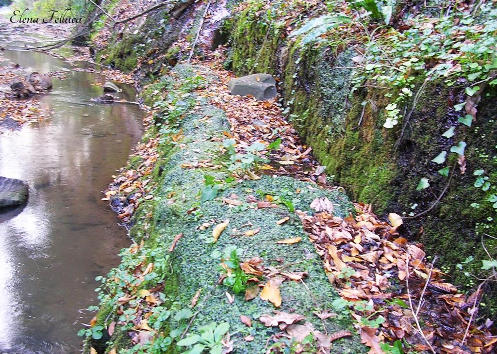 Impianto per la raccolta delle acque di epoca etrusca.