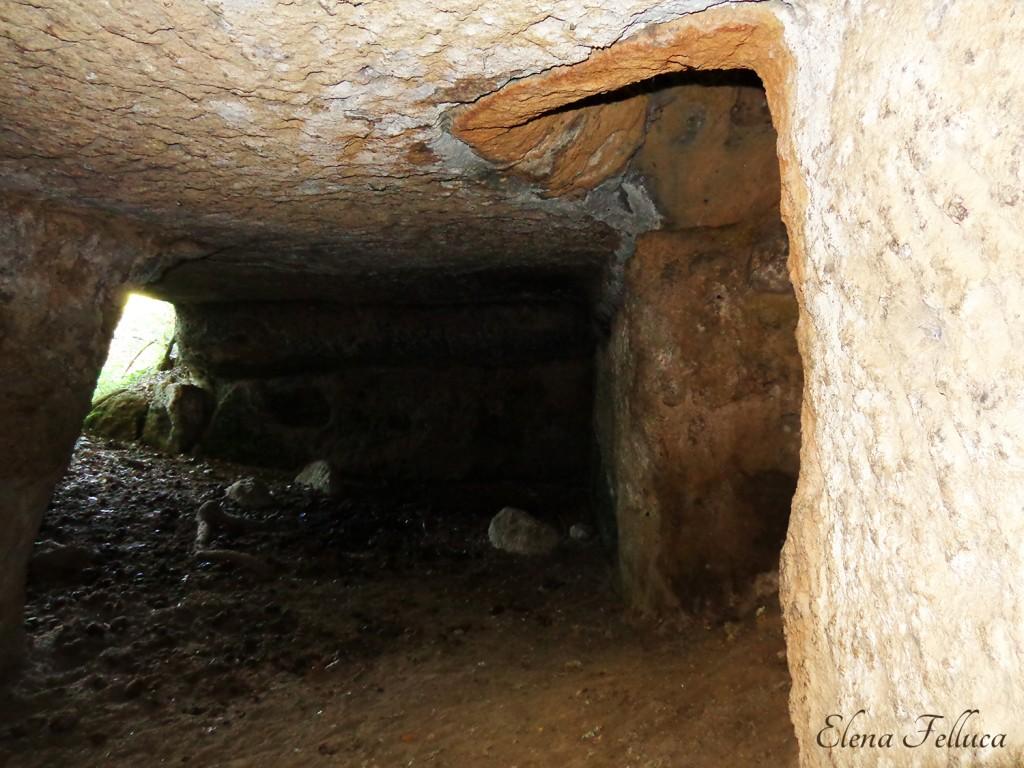 Grotta Camina - Palo bucato.