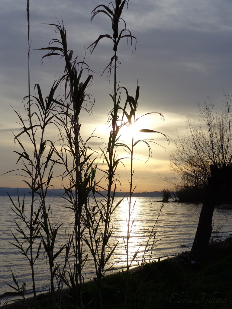 Lago Sabatino