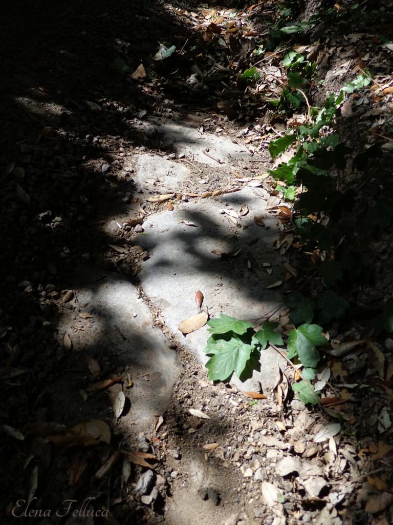 Bracciano, resti di un'antica via basolata